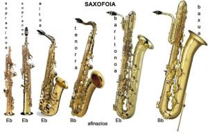 6Saxomota